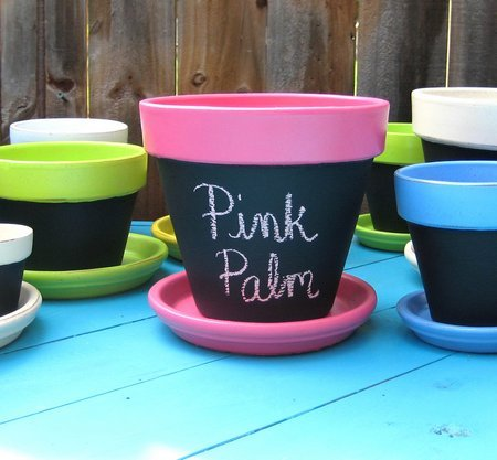 pink palm pots and more