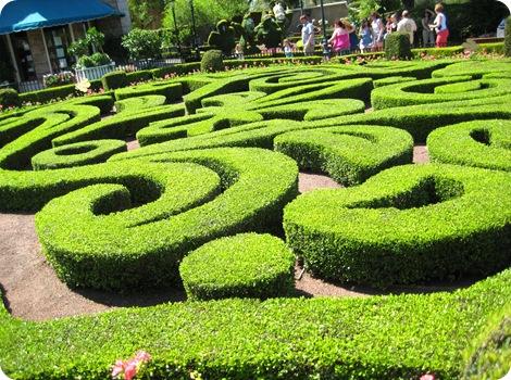 Disney Epcot Flower Show 2011 6
