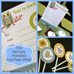 Free-Owl-Party-Printables-from-Paper-Glitter-EverythingEtsy.jpg
