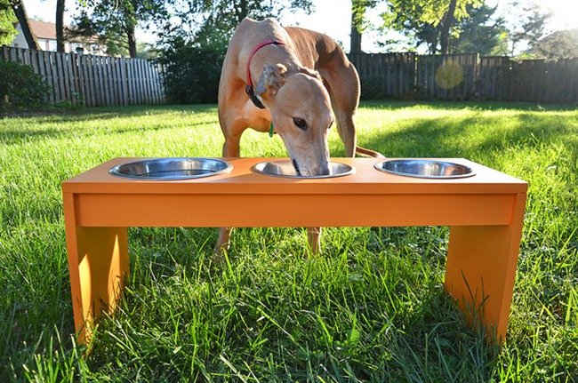 DIY Dog Feeder - funnel cloud
