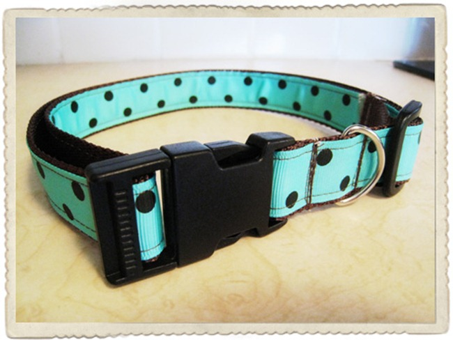 handmade dog collar - b spoke