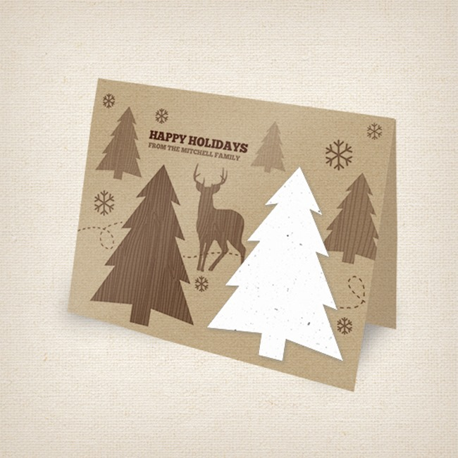 Botanical PaperWorks Rustic Holiday Cards
