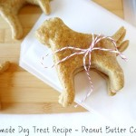 Homemade Dog Treat Recipe–Peanut Butter Cookies
