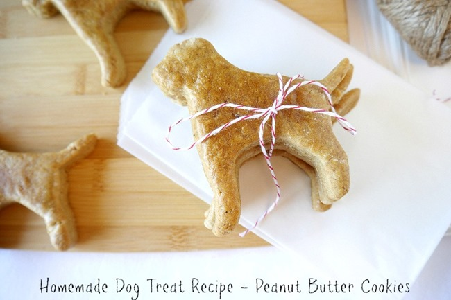 Homemade Dog Treats - DIY Gift