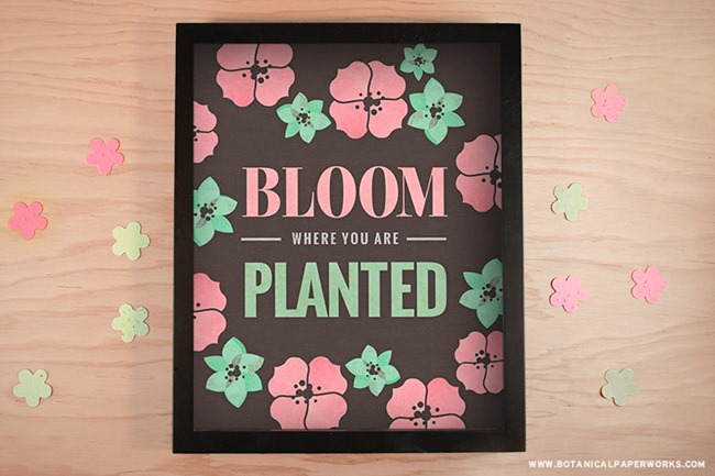 Bloom_Where_Planted