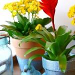 Spring Bling Glitter Flower Pots