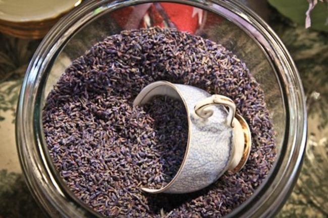 my favorite craft supplies - lavender