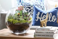 Succulent-Garden-DIY.jpg