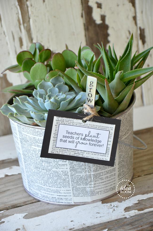 Succulent Garden Teacher Gift
