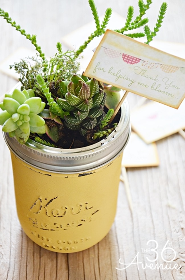 Teacher Gift Idea - mini garden