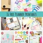 16 Free Planner Printables