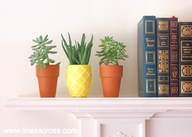 DIY Pineapple Planter