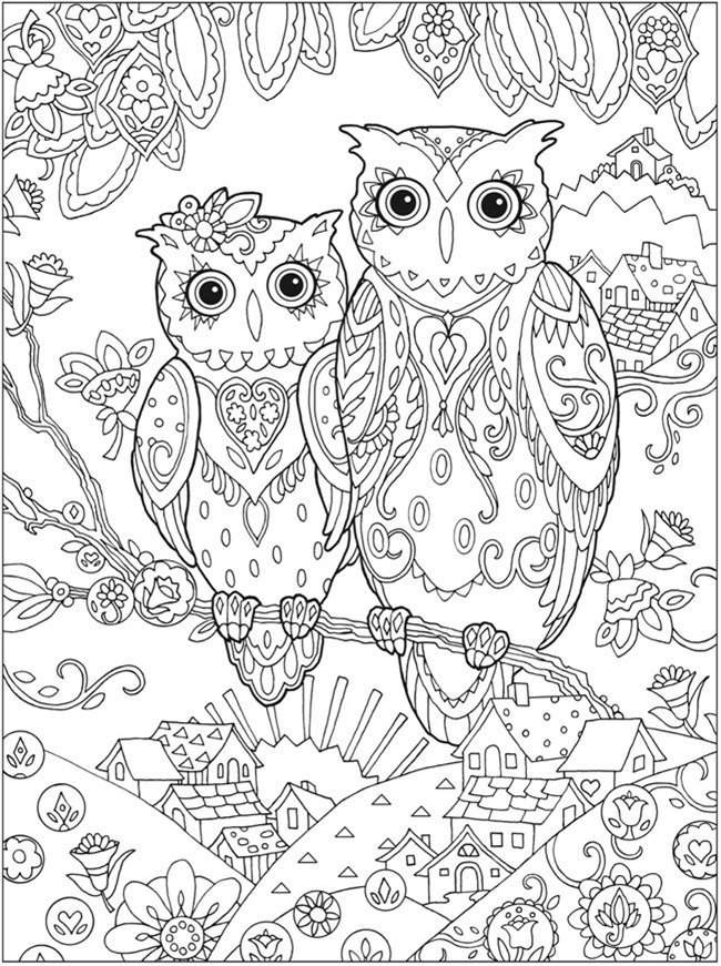 Adult Coloring pages - owls
