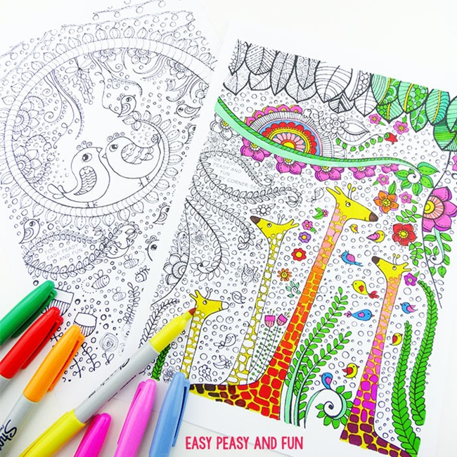 Adult coloring pages - bird and friends