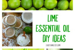 Lime-Essential-Oil-DIY-Ideas-Learn-More-on-EverythingEtsy.com_.jpg