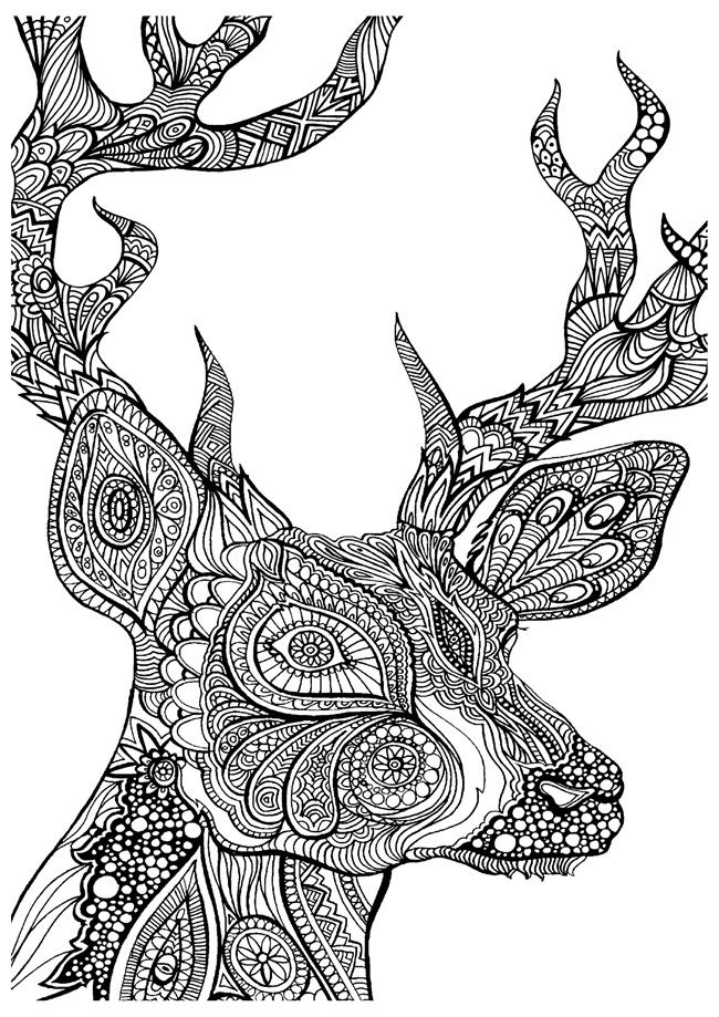 adult coloring pages deer - Free Colouring Worksheets