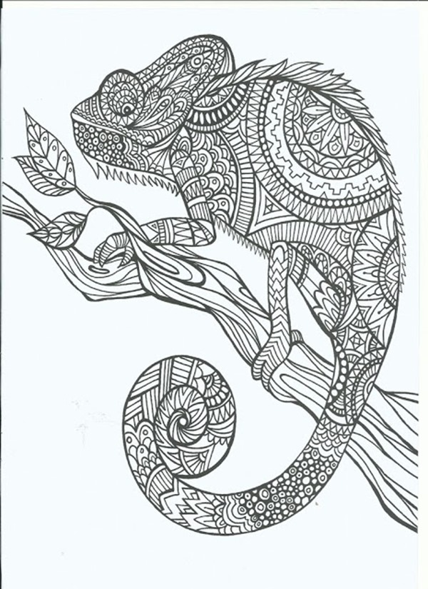 designs coloring pages for adults - photo#33