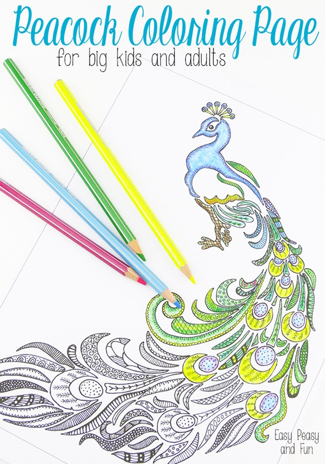 Printable Coloring Pages for adults - peacock