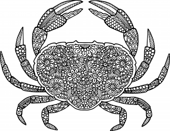 free printable coloring pages for summer crab - Turtle Coloring Pages For Adults