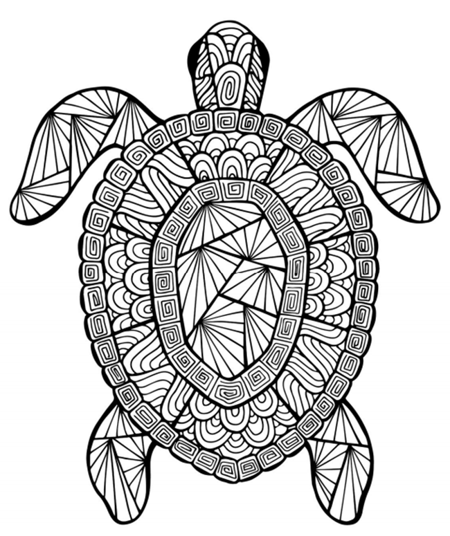 Free Printable Coloring Pages for Summer - Turtle