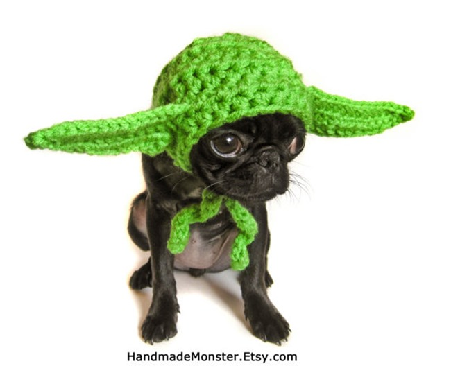 Handmade Pet Costume - Crochet Yoda