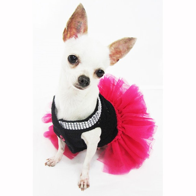 Handmade Pet Costume - Party Girl