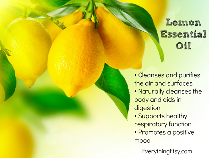 doTERRA Lemon Essential Oil and the Benefits - EverythingEtsy