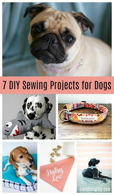 7 DIY Sewing Projects for Dogs