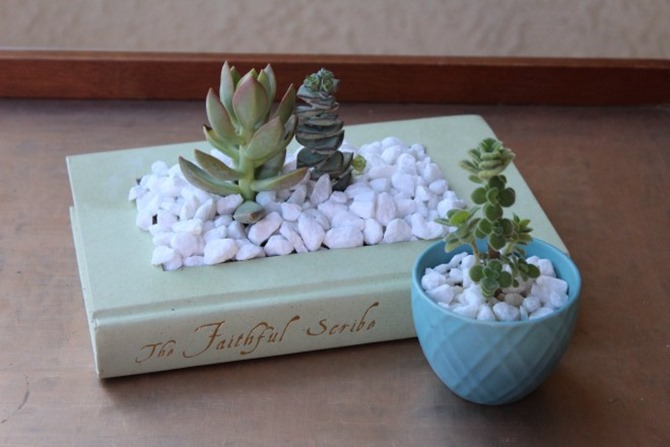 DIY Gift - Book Planter - Happily Dwell