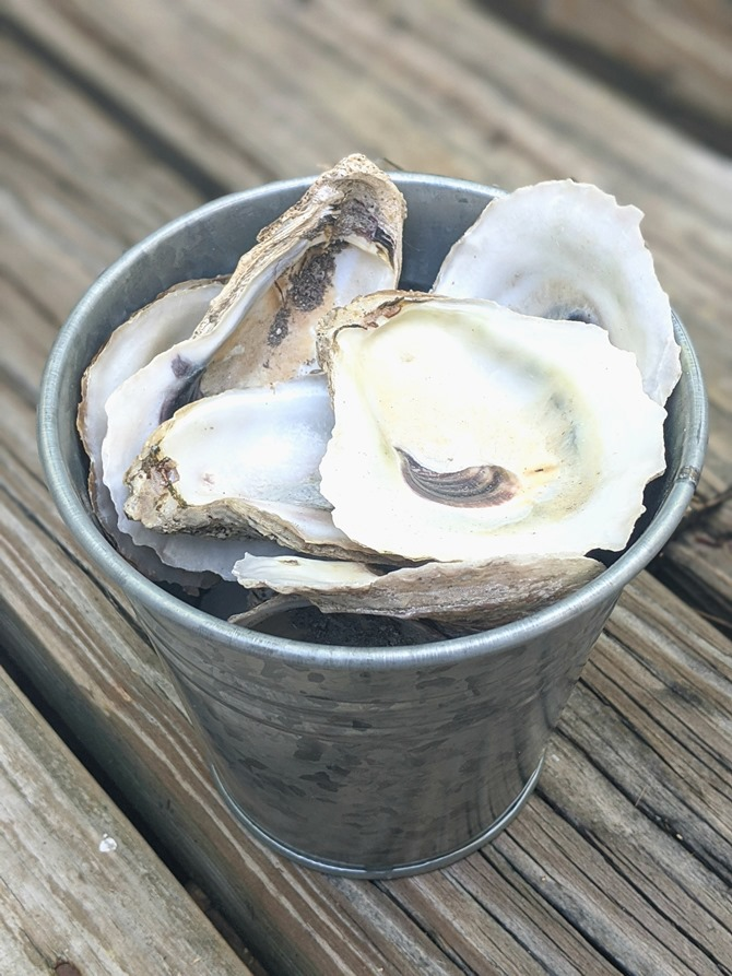 Supplies for DIY Oyster Trinket Dish - EverythingEtsy.com