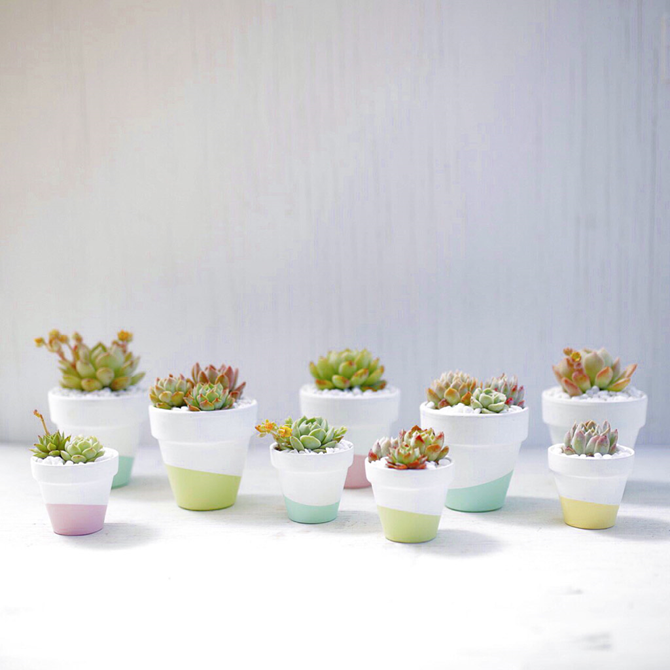 15 DIY Gifts for Plant Lovers - Dipped Flower Pots - EverythingEtsy