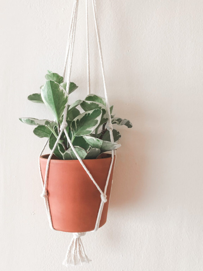 15 DIY Gifts for Plant Lovers - Macrame Plant Hanger - EverythingEtsy