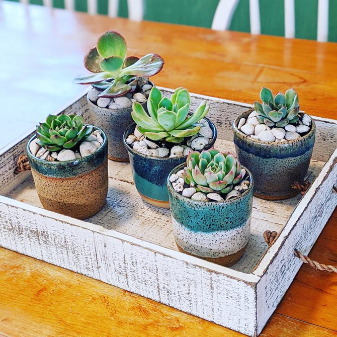 15 DIY Gifts for Plant Lovers - Shop on Etsy - KimberlyLayton.etsy