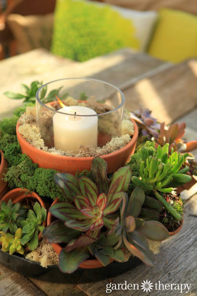 15 DIY Gifts for Plant Lovers - Succulent Centerpiece - EverythingEtsy