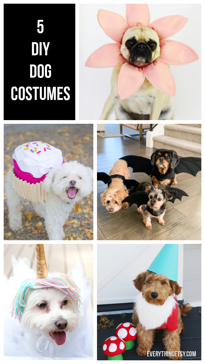 5 DIY Dog Costumes - Quick and Easy Ideas - Everything Etsy