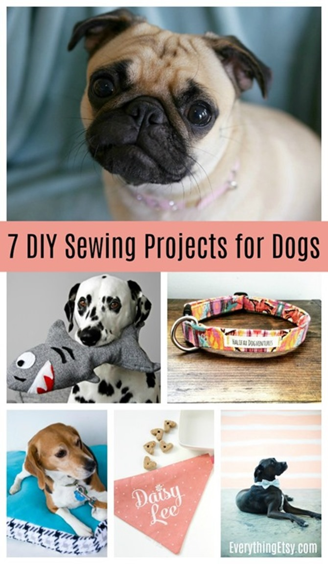 7-DIY-Sewing-Projects-for-Dogs-EverythingEtsy.com_