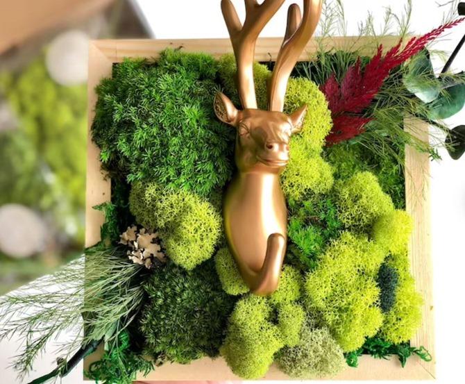 DIY Deer Moss Wall Art on Everything Etsy