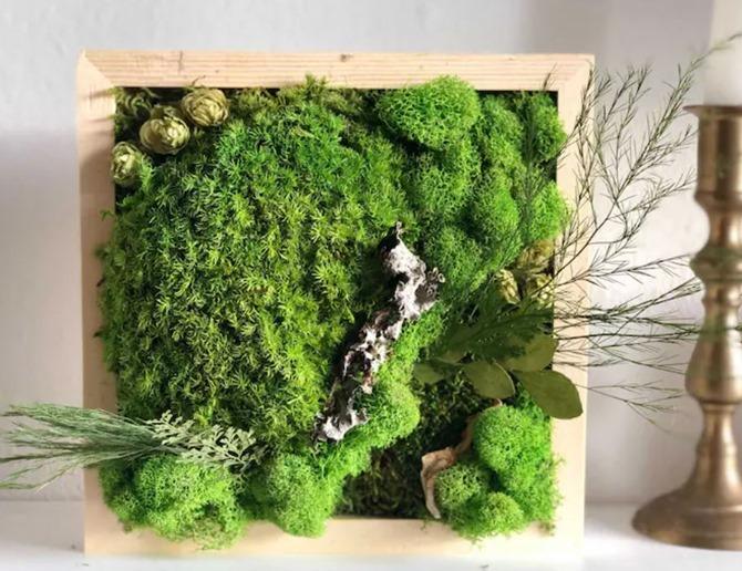 DIY Moss Wall Art on Everything Etsy